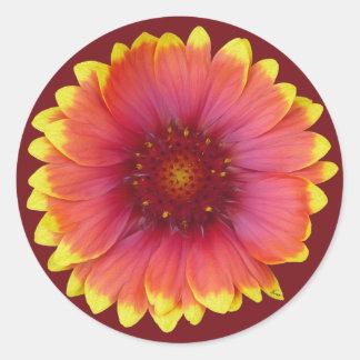 Gaillardia 1 round sticker