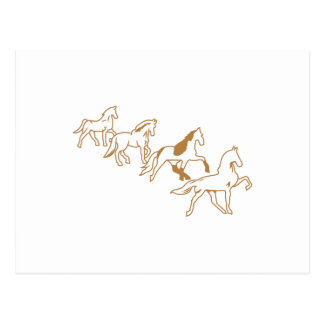Gaited Horses Outline Postcard