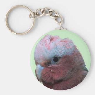 Galah Wildlife key Chain
