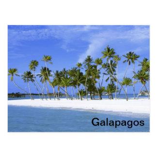 Galapagos - beach postcard