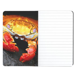 Galapagos Crab Journal