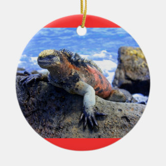 Galapagos Double-Sided Ceramic Round Christmas Ornament