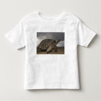Galapagos Giant Tortoise Geochelone Toddler T-Shirt