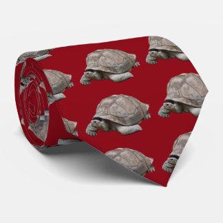 Galápagos giant tortoise tie