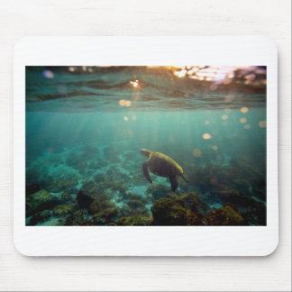 Galapagos green lagoon sea turtle underwater mouse mat
