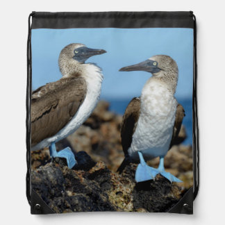 Galapagos Islands, Isabela Island Drawstring Bag