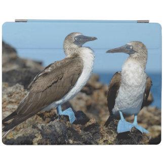 Galapagos Islands, Isabela Island iPad Cover