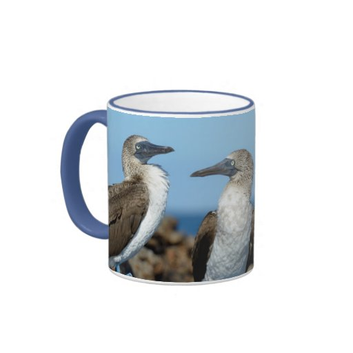 Galapagos Islands, Isabela Island Mugs