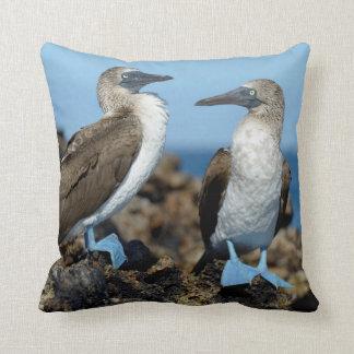 Galapagos Islands, Isabela Island Throw Cushions
