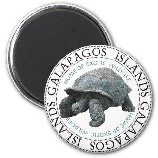 Galapagos Islands Tortoise 6 Cm Round Magnet