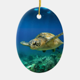 Galapagos paradise green sea turtle underwater christmas ornament