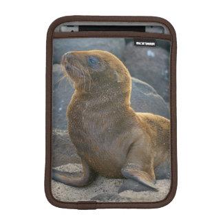 Galapagos sea lion iPad mini sleeve