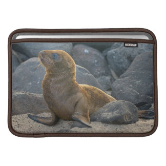 Galapagos sea lion sleeve for MacBook air