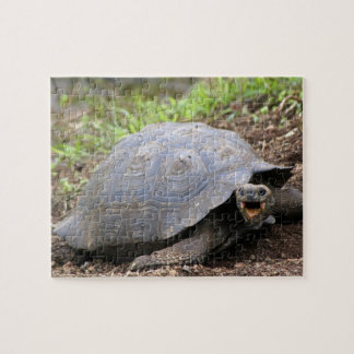 Galapagos Tortoise with mouth open Jigsaw Puzzle