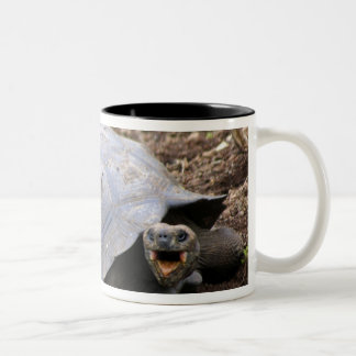 Galapagos Tortoise with mouth open Two-Tone Coffee Mug