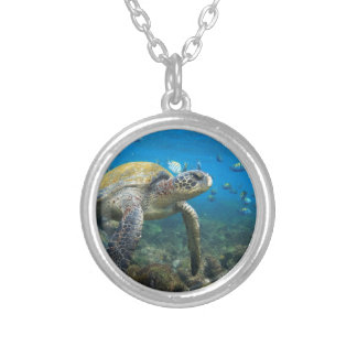Galapagos turtles swimming in lagoon silver plated necklace