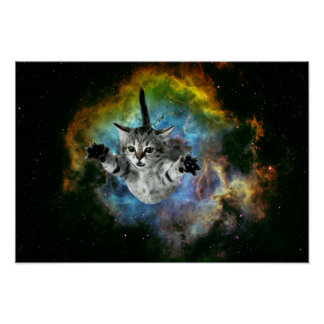 Galaxy Cat Universe Kitten Launch Poster