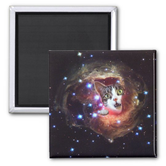 Galaxy Space Cats LOL 2 Inch Square Magnet