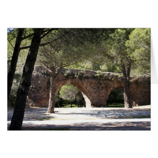 Gallo-roman aquaduct of Frejus (France) Greeting Card