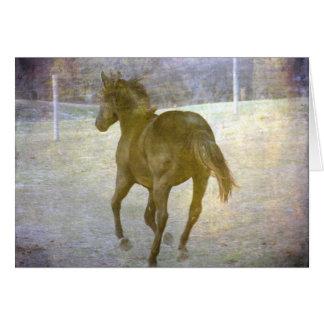 Gallop Away Greeting Card