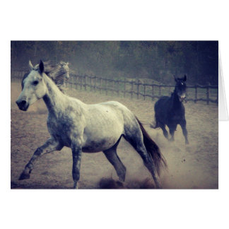 Gallop Greeting Cards