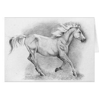 Gallop Card