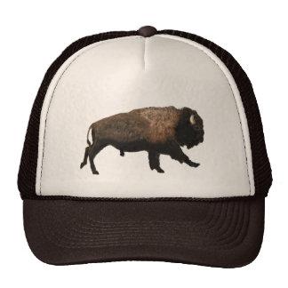 Galloping Bison Cap