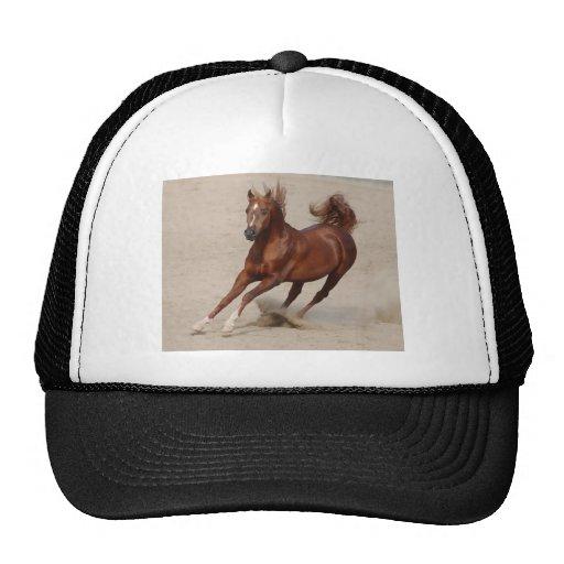 Galloping Brown Chestnut Horse Kicks Up Sand Trucker Hat