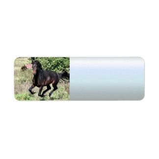 Galloping Chestnut Horse