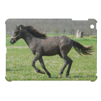 Galloping Colt iPad Mini Cases