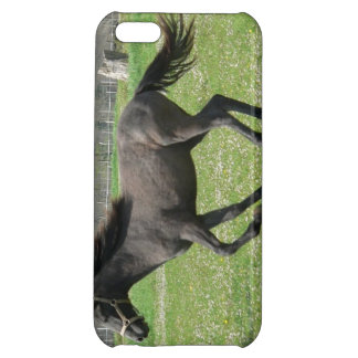 Galloping Colt iPhone 5C Cover
