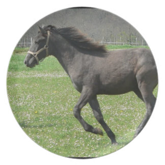 Galloping Colt  Plate