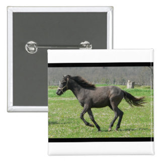 Galloping Colt Square Pin