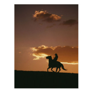 Galloping Cowboy Silhouette Postcard