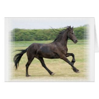 Galloping Friesian Card