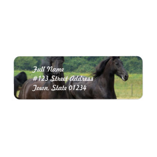 Galloping Friesian Horses  Mailing Labels