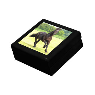 Galloping Horse Gift Box
