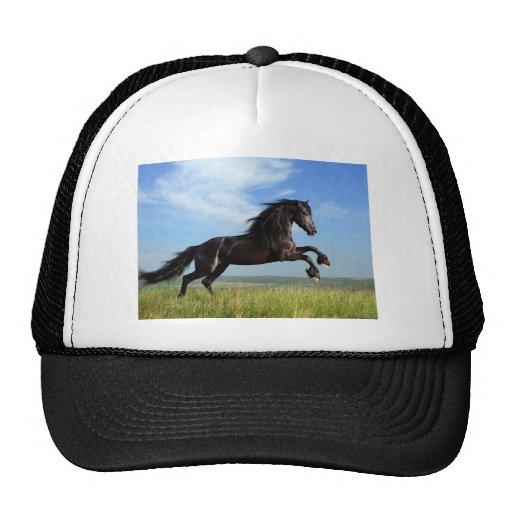 Galloping Horse Mesh Hats