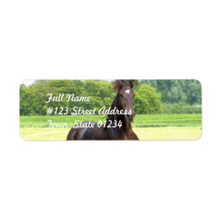 Galloping Horse Mailing Labels
