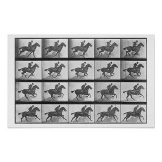 Galloping Horse, plate 628 from 'Animal Locomotion Poster