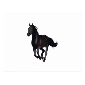 GALLOPING HORSE POSTCARD