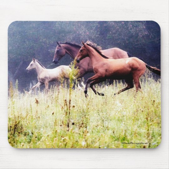 Galloping Horses Photography Mouse Mat