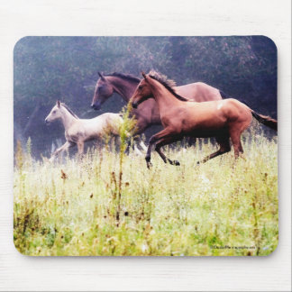 Galloping Horses Photography Mouse Pad
