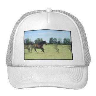 Galloping Mustangs Baseball Cap Mesh Hat