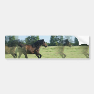 Galloping Mustangs Bumper Sticker