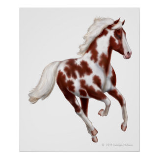 Galloping Overo Paint Horse Print