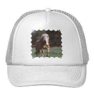Galloping Palomino  Baseball Hat