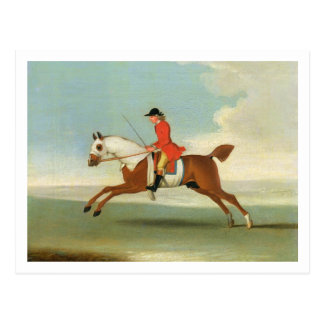 Galloping Racehorse and mounted Jockey in Red (oil Postcard