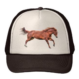 Galloping Sorrel Leader Mare Horse Design Cap