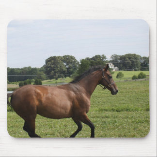 Galloping Thoroughbred  Mouse Pad